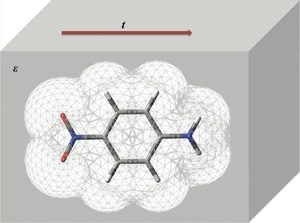Real-Time Time-Dependent Dielectric Response
